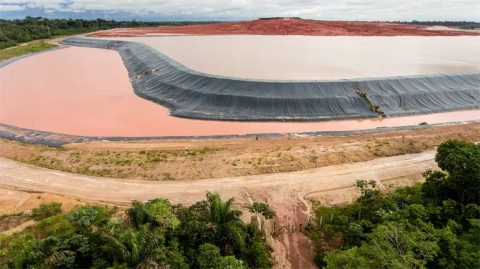 (c) Amazonia Real